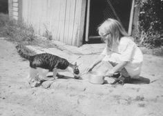 "All sizes   Feeding ""Timothy"" the cat - Greensborough, VIC, Gordon Binns   Flickr - Photo Sharing!"