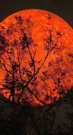 **What's next? Een rode maan ten gevolge van een maansverduistering komt steeds voor 14 dagen na een zonsverduistering. Bij ons is de eerstvolgende niet te zien, maar wel die van maandag 28/9 (04u47m42s).