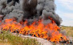 A polícia queimou cerca de 3,3 toneladas de maconha (Foto: Reprodução)
