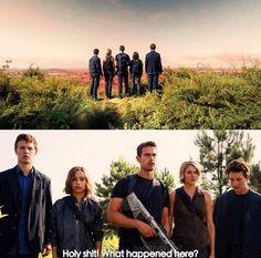 Divergent Hunger Games, Divergent Series, Insurgent, Allegiant, Veronica Roth, Movie Quotes, Fangirl, Entertaining, Couple Photos