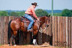Downunder Horsemanship | Training Tip: End Training Sessions Positively
