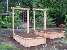 garden box   Garden Boxes for Veggies