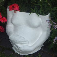 Pregnant belly cast with hands