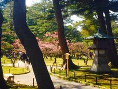 Japan parks