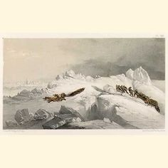 This image (Plate VIII. May. A series of fourteen sketches...) shows two sledges cutting a road through heavy hummocks of ice in the Queen's Channel. One sledge has passed over a bank of snow and is moving very quickly down the opposite incline. The second sledge is still toiling up the steep incline with its heavy burden.