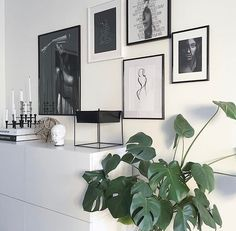 Interiorblogger • Freelance Interior stylist • Ambassador for Simple Living, Designfavoritter & Roomstory Contact: sofiemolge@gmail.com ✉️