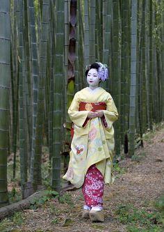 Maiko Toshimomo, May 2015 Japanese Geisha, Japanese Beauty, Japanese Kimono, Geisha Japan, Kabuki Costume, Geisha Art, Kimono Design, Samurai Art, Japan Photo