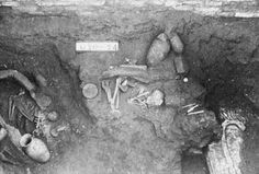 Nephilim Chronicles: Giant Human Skeletons: Fair Haired Giant Human Skeletons Unearthed in New Zealand