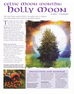Book of Shadows page about Celtic Moon and Holly Moon Wicca Witchcraft, Pagan Witch, Witches, Celtic Astrology, Tarot, Celtic Tree, Moon Magic, Sabbats, Practical Magic