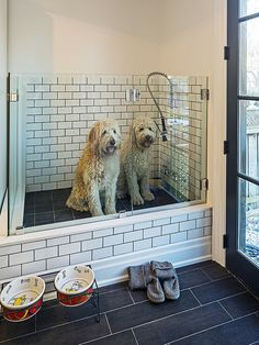It isn't easy keeping your pets squeaky clean, but a raised pet shower like this might help!   Would you add a pet-bathing station to your home?