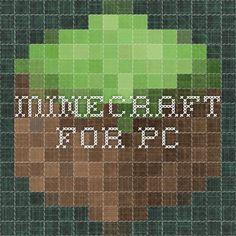 Après Login In,C'est le profil minecraft.