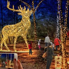 Haldenzauber: a magical, light-filled experience in Hückelhoven for all ages  #mkillumination #festivelighting #lightfestival #haldenzauber Light Decorations, Festive, Destinations, Lighting, Inspiration, Biblical Inspiration, Lights, Travel Destinations, Lightning
