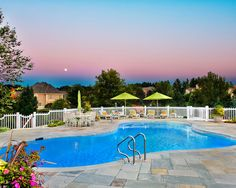 Freeform Outdoor Inground Swimming Pools #Luxury Houses