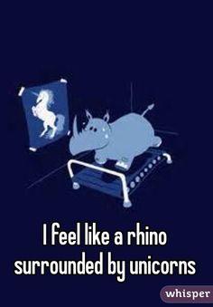 I feel like a rhino surrounded by unicorns