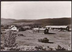 Hedmark fylke Tynset kommune Engevangen. Aumdalen, U.utg. St Tylldalen -1951