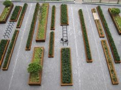 As green square, Mathildeplein offers peace and quiet in the hectic city centre of Eindhoven, Netherlands - Landscape architecture: Buro Lubbers: Contemporary Landscape, Urban Landscape, Landscape Design, Landscaping Tips, Garden Landscaping, Habitat Groupé, Public Realm, Parcs, Garden Spaces
