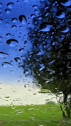 glass_wood_grass_sky_window_humidity_rain_drops_9204_640x1… | Flickr