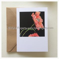 Fine Art Greeting Card, Poppies, Botanical, Red Flower, Kylie Fogarty, Blank Greeting Card by KylieFogartyFineArt on Etsy