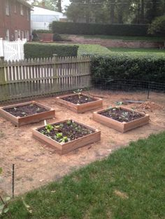 Raised bed gardening within city limits. (Added pea gravel around beds after pic was taken.) We are SO farm-to-table! Now we just need to figure out what grows well in Hardiness Zone Garden Sheds, Raised Garden Beds, Raised Beds, Garden Paths, Zone 7, Pea Gravel, City Limits, Gardening, Patio