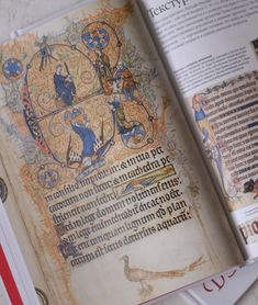 Blue Pumpkin, How To Plan, Books, Libros, Book, Book Illustrations, Libri