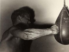 muscles/tendons/veins looks like