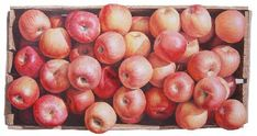 National Geographic, 129x110cm Apple, 57.5x53.5cm, 120x110cm, F.R.P, Urethane Painting, 2010 가을향기, 226.1x210cm, Oil on Canvas, 2010 탐스러운 상자, 224x20 Fruit, Vegetables, National Geographic, Apples, Blog, Drawing, Painting, Beautiful, Veggies