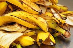 casca-banana-adudo-substrato-orquideas-casco-ovo