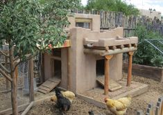 Adobe chicken coop OMG!!!! I want this!!!
