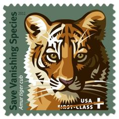 Postal Service is proud to support conservation funds that are helping to create hope for the future with this new semi-postal stamp. Under the Multinational Species Conservation Funds Semipostal Stamp Act of the Postal Service will transfer. Save Wildlife, Love Stamps, Buy Stamps, Wildlife Conservation, Turtle Conservation, Endangered Species, Animal Species, Tiger Design, Stamp Collecting