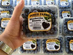 Look for DiMeo blueberries in a grocery store near you. But, you can save money by growing your own blueberries with DiMeo blueberry plants on sale now at our blueberry nursery dlr. in New Jersey