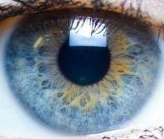 Disso Voce Sabia?: Ajuste da pupila à claridade não é movimento mecânico