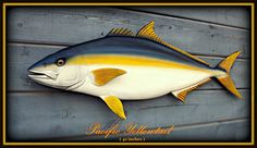 Yellowtail fish art wood carving 40'' sulpture wood by WOODNARTS
