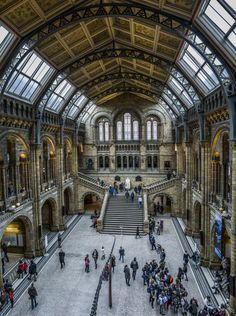 Photograph British Natural History Museum by Andi Campbell-Jones on 500px