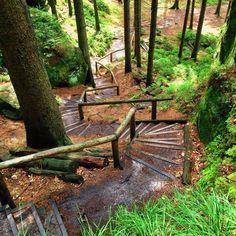 Immer hoch und runter  Bin selten so viele Stufen gelaufen! #malerweg #elbsandsteingebirge #sachsen #wandern #hiking #outdoors #fb #stairs #saxony