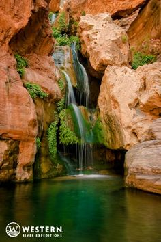 A short hike brings you to beautiful Elves Chasm in the Grand Canyon #whitewater #rafting #vacation