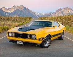1973 Mustang Mach 1