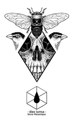 encremecanique-alex-iumsa-skull-flashset-bee-insect-bird-geometry | Flickr - Photo Sharing!