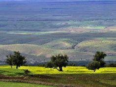 Paysage agricole au Maroc.