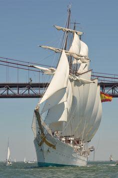 Lisbon Parade of Sail 2012