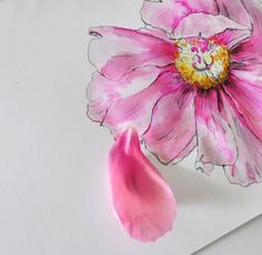 testing watercolours, watercolor review, painting tips for beginners, watercolours , colours, how to paint, Peerless Transparent water colours, Pink. flowers. watercolour flower , how to paint. art blog
