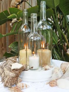Cut the bottoms off wine bottles to use for candle covers. Keeps the wind from blowing them out! #MorningsWithMoll