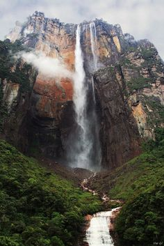 weapxn:  westeastsouthnorth:  Angel Falls, Venezuela  more here