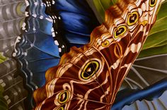 Morning Midst oil painting butterfly abstract contemporary blue morpho http://www.rachelsteely.com/artwork/morning-midst/