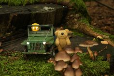 Turboo Bear and his copilot are going for a test drive. Are you ready for an off-road adventure? Off Road Adventure, Offroad, Jeep, Miniatures, Off Road, Jeeps, Mockup