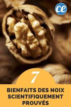 Les 7 Bienfaits des Noix Scientifiquement Prouvés : Le N°4 est Incroyable !