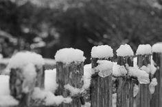 January 18 - Snow Day