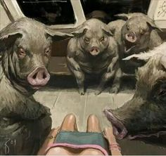 Leering pigs!! Yes it can feel like this.