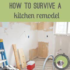 Surviving a Kitchen Remodel