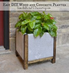 DIY Wood and Concrete Planter Easy DIY Wood and Concrete Planter: add a little concrete paint and this would go with any front door area.Easy DIY Wood and Concrete Planter: add a little concrete paint and this would go with any front door area. Concrete Crafts, Concrete Pots, Concrete Projects, Outdoor Projects, Garden Projects, Concrete Color, Cement Pavers, Diy Projects, Concrete Design
