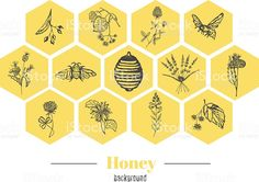 Honey background royalty-free stock vector art